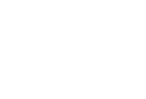 boot icon
