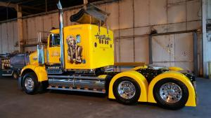 Truck protected with 9H-LDC
